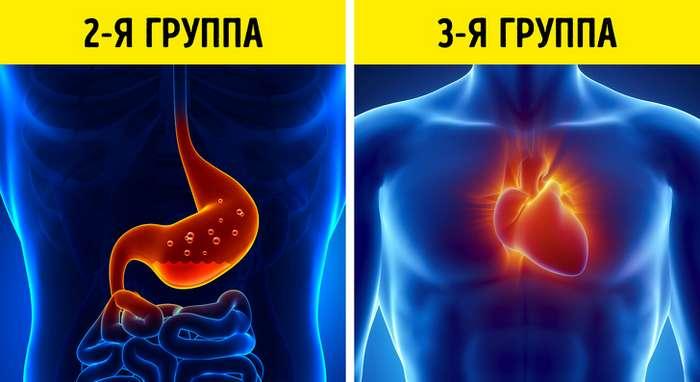 6фактов отом, что группа крови влияет навас больше, чем выдумаете (Спойлер: это из-за нее нам так сложно похудеть)