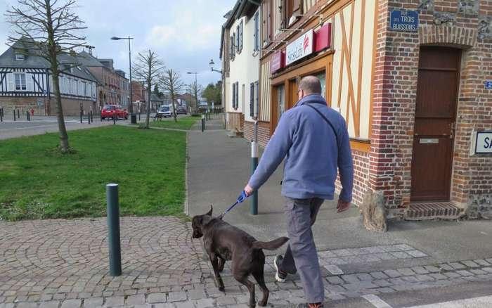 Во французском городке штрафуют за лай собак