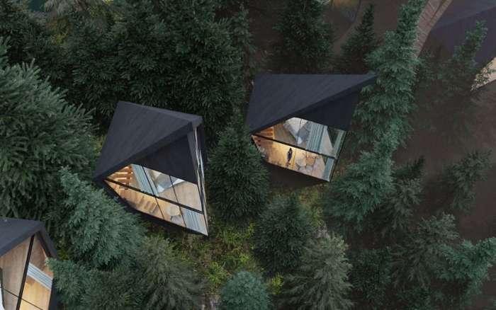 Единение с природой - дома на деревьях для новой формы туризма