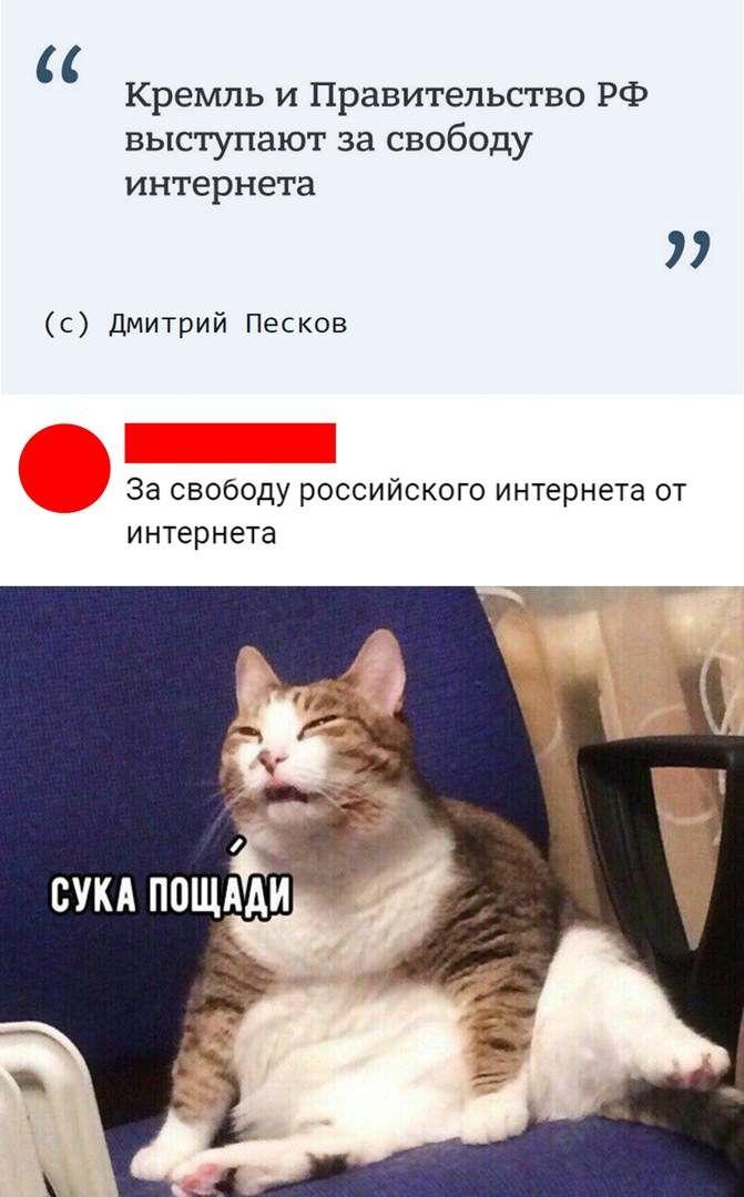 Скриншоты смешных комментариев и смс юмор