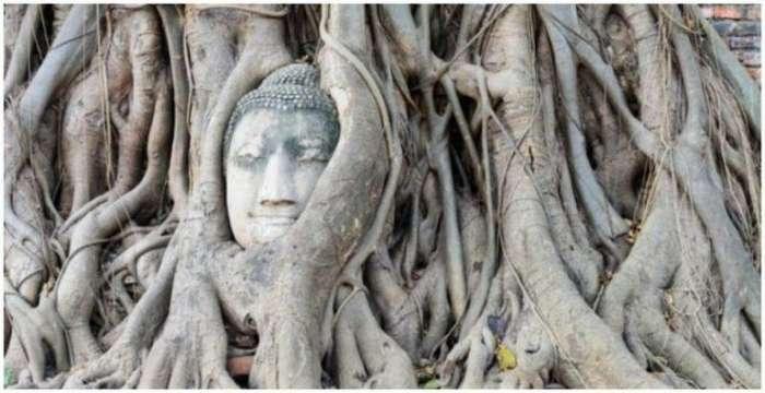 Необычная достопримечательность Таиланда Интересное