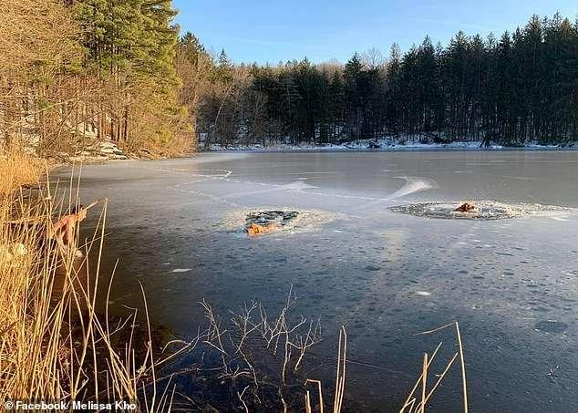 Тимофей Юрьев — житель Нью-Йорка спас двух собак из ледяной воды Интересное