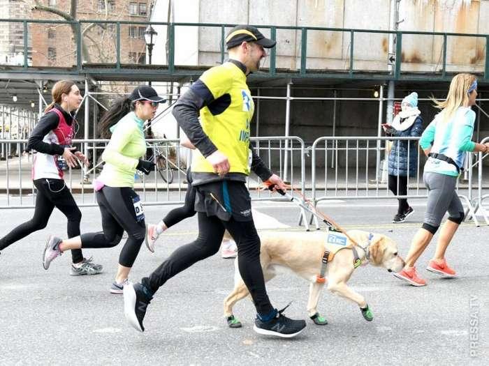 Томас Панек - первый человек, который преодолел марафонскую дистанцию при помощи собак поводырей