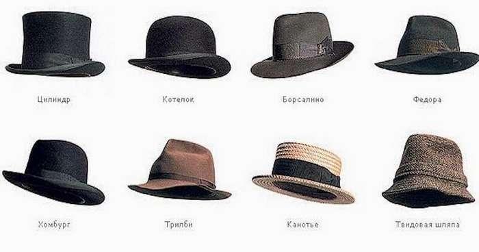 Всё дело в шляпе-1 фото-