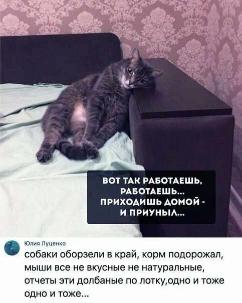 Улибнись-29 фото-