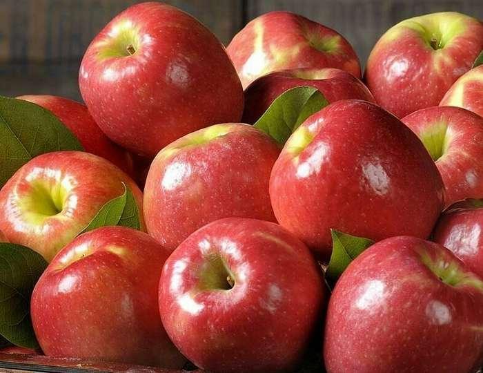 Какие фрукты и овощи лучше покупать только в сезон-6 фото-