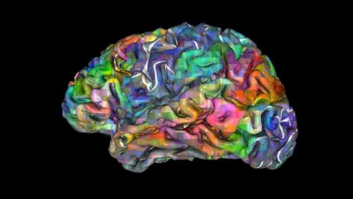 Австралийские нейробиологи смогли предсказать выбор людей за 11 секунд до принятия ими решений Интересное