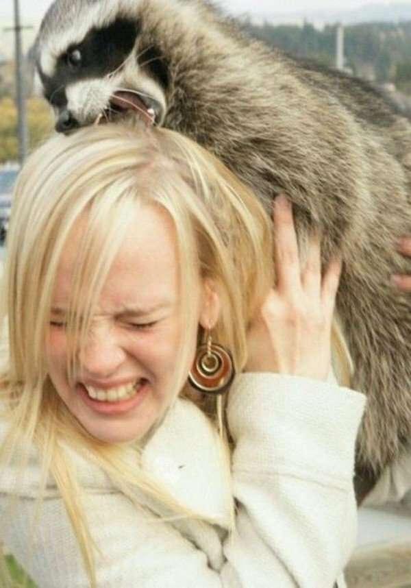 15 животных, которые не слишком жалуют девушек                      Интересное