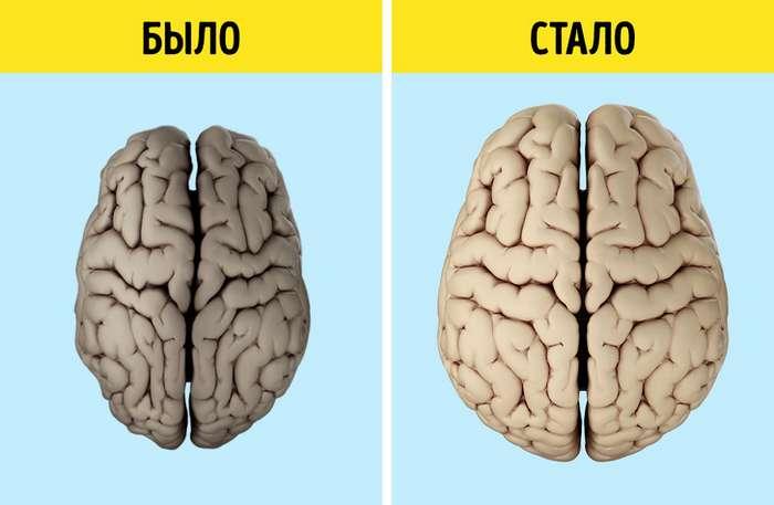 Группа людей обернула старение мозга вспять всего за6месяцев, иэтот опыт можно повторить самостоятельно