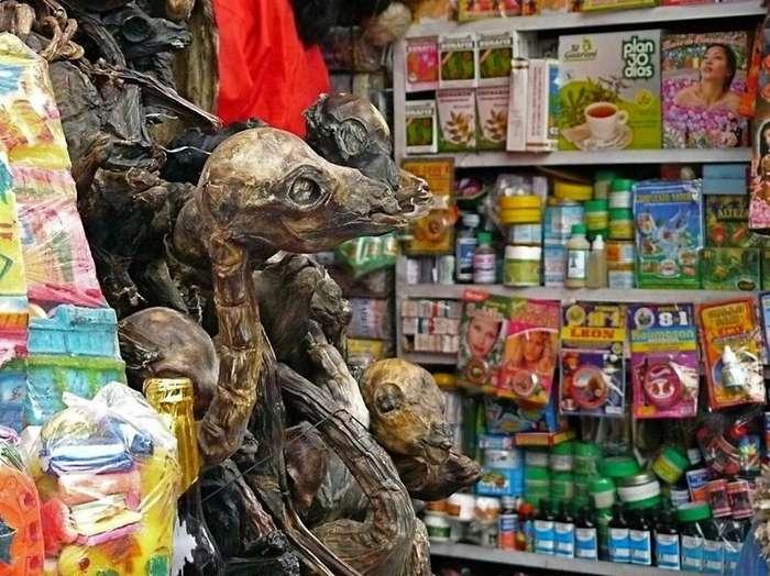 Рынок ведьм в Боливии предлагает сушёных лам и галлюциногенные листья                      Интересное