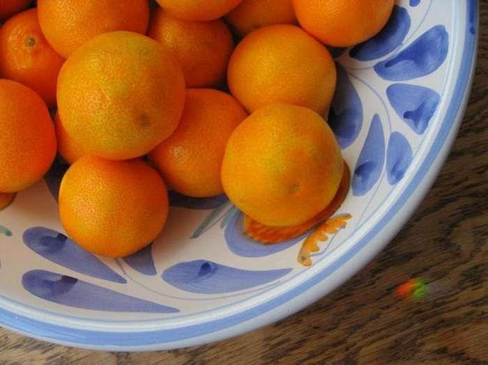 Не откусывать бургер у друга, не есть апельсины в ванной, не поить лося водкой: необычные пищевые законы США