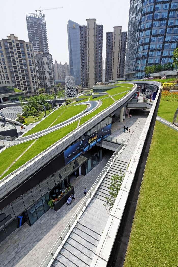 Городская ферма в центре Шанхая Интересное