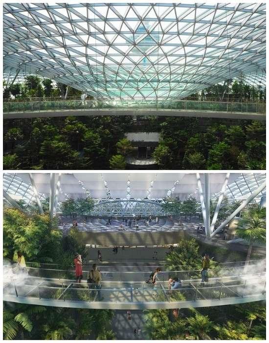 В лучшем аэропорту мира весной появится сооружение, из-за которого можно даже забыть о своем рейсе Интересное