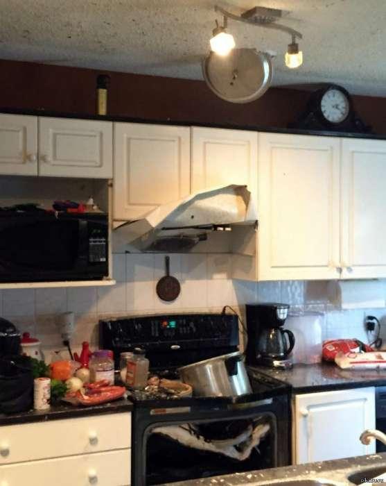 16 курьезных снимков людей, которым категорически запрещено заходить на кухню Интересное