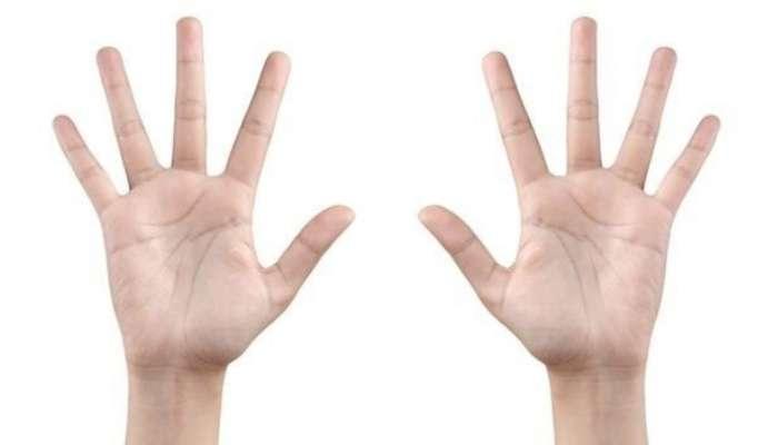 Узнать альфа-мужчину по длине пальцев, или О чем говорят руки