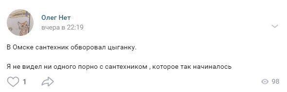 Сломал систему: омский сантехник обманул цыганку и украл у неё деньги-4 фото-