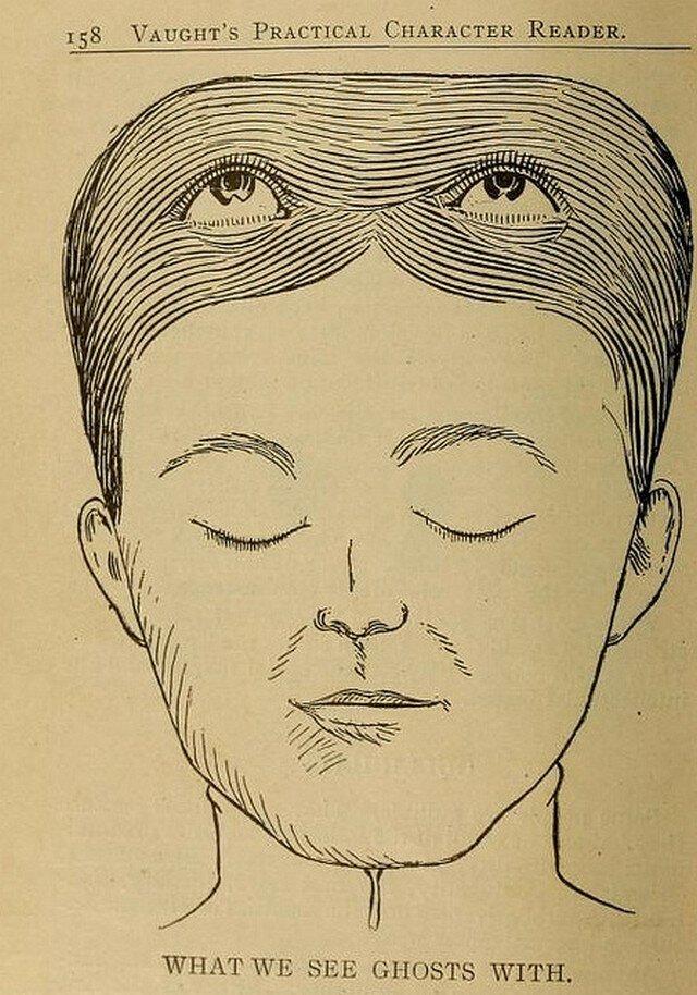 Как френология учит читать людей. -Практический считыватель характера- 1902 года-28 фото-