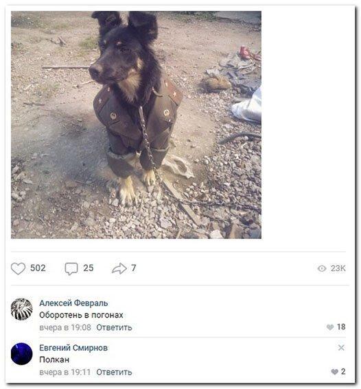 Прикольные и смешные картинки от Димон за 01 апреля 2019-50 фото-