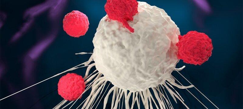 Учёные заставили раковую опухоль убить саму себя-2 фото-