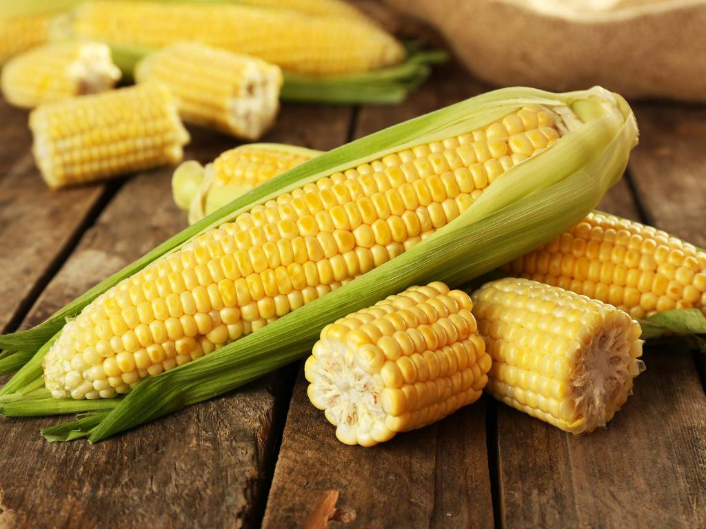 Кукуруза, помидор, картофель и шоколад: продукты от индейцев, без которых мы уже не представляем свою жизнь