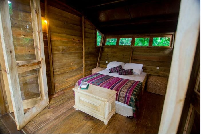 Пожить на дереве: необычный бразильский хостел предлагает туристам исполнить мечту детства