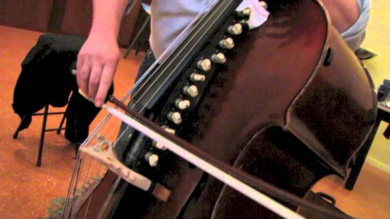 10 самых редких музыкальных инструментов в мире-10 фото-