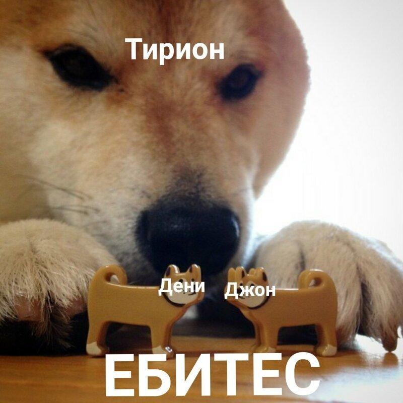14 Самых смешных Мемов «Игры Престолов»                      Интересное