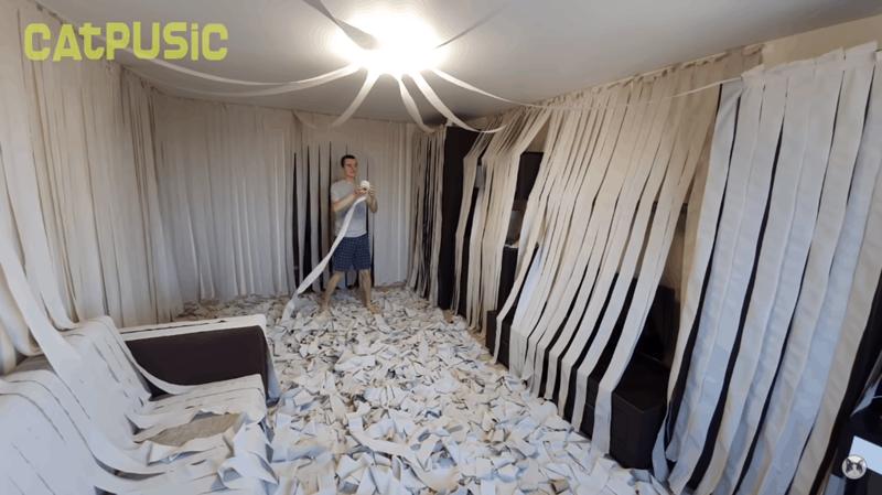 Хозяева сделали коту игровую комнату из сотни рулонов туалетной бумаги, и это настоящий кошачий рай                      Интересное
