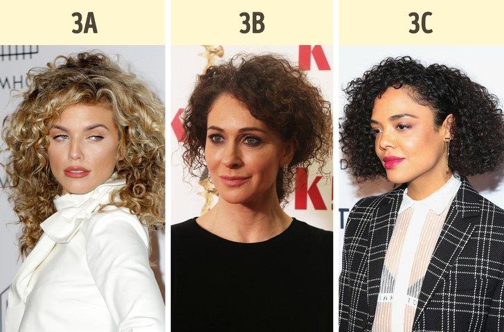 Как определить свой тип волос и выжать из него максимум красоты  Интересное