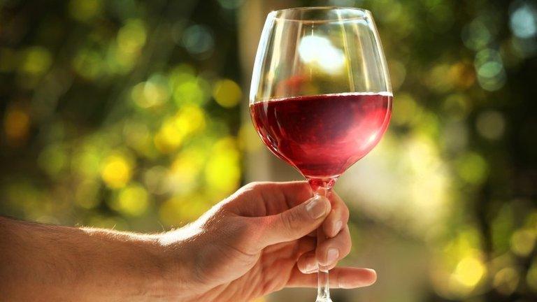 Что будет, если выпивать бокал вина в день: мнение ученых Интересное