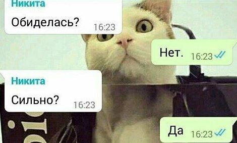15 смешных и честных СМС, которые могли отправить друг другу только супруги                      Интересное