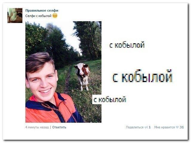 Смешные комментарии и картинки из соцсетей-31 фото-