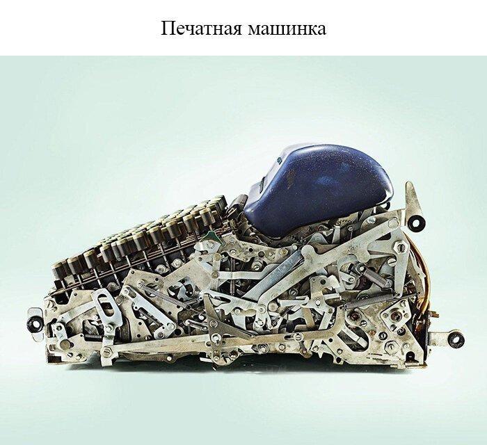 Фото вещей, разрезанных пополам, демонстрирующие их неожиданную суть                      Интересное