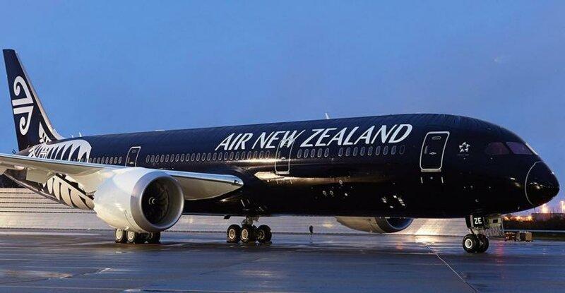 Высокомерных богачей выгнали из самолета за отказ знакомиться с инструкцией по безопасности-3 фото-