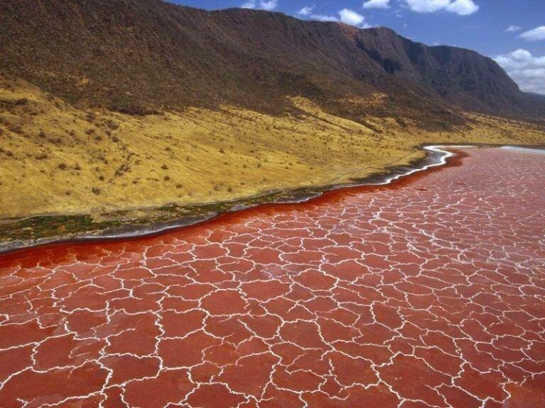 Озеро Натрон в Танзании. Пугающее, но удивительное-8 фото-