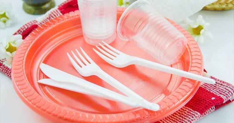 В России могут запретить пластиковую посуду-6 фото-