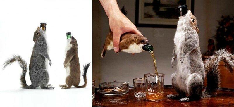 10 самых безумных сортов пива                      Интересное
