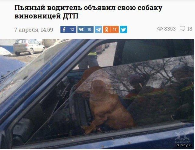 Новостные заголовки