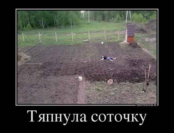 Дачное-40 фото-