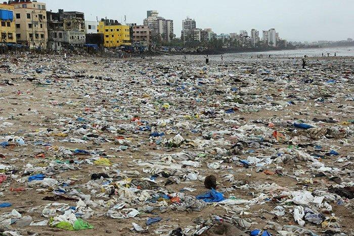 С пляжа в Индии убрали 5000 тонн мусора, чтобы спасти черепах-7 фото-