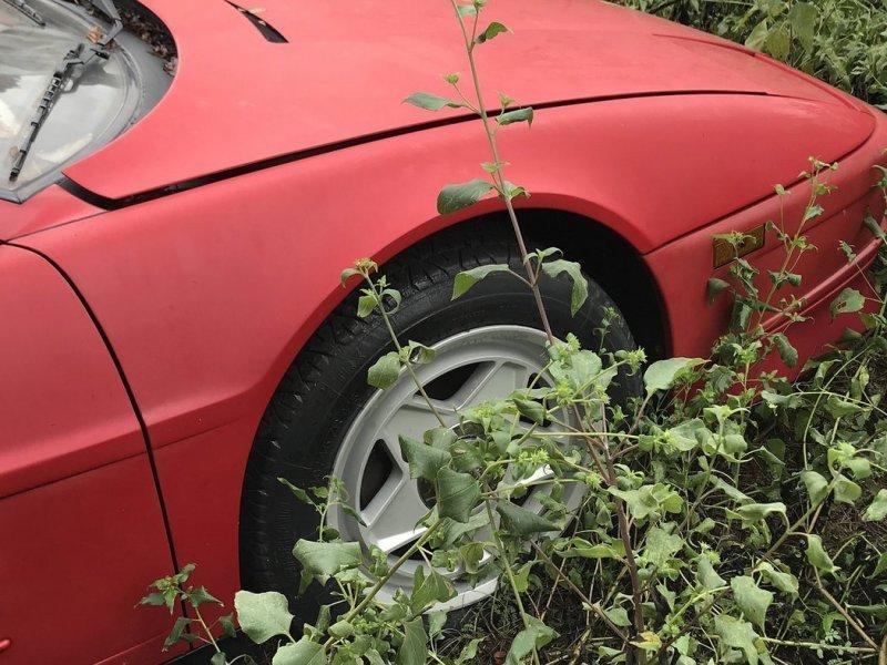 Частную коллекцию суперкаров Ferrari оставили гнить в поле-27 фото-