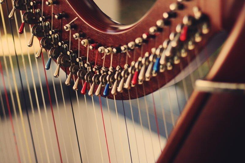Какой из струнных инструментов появился самым первым?-3 фото-