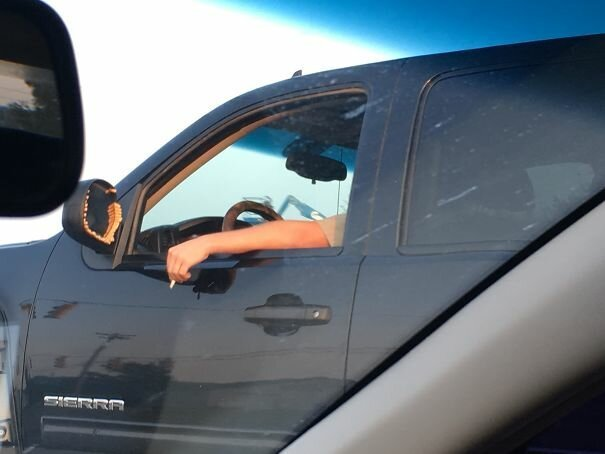 40 встреч на дороге, от которых у водителей округлялись глаза-41 фото-