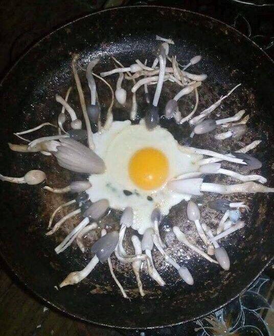 25 случаев кухонного креатива, который вы запомните надолго-27 фото-