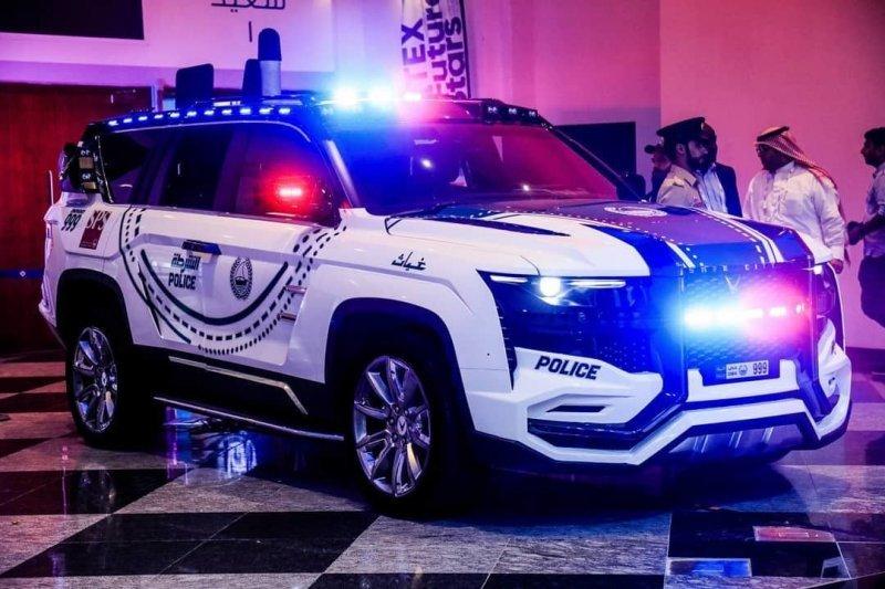 -Зверь- и -Гиперспорт-: W Motors на страже закона в ОАЭ-19 фото + 4 видео-