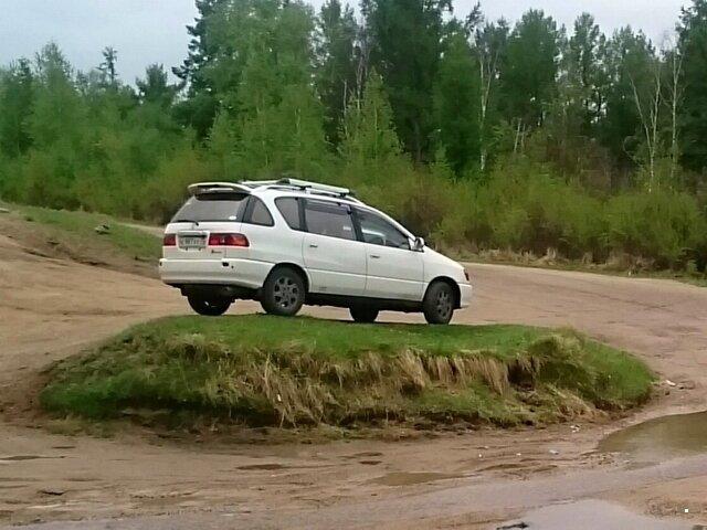 Автовсячина от БрОдЯгА за 18 июня 2019-40 фото-