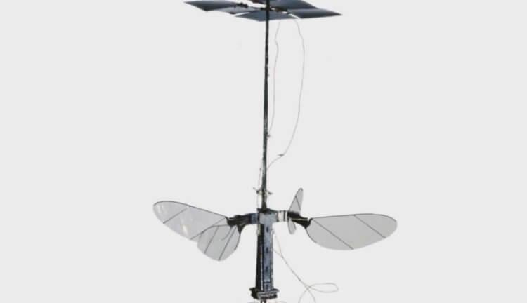 Самый легкий робот в виде насекомого работает на солнечной энергии