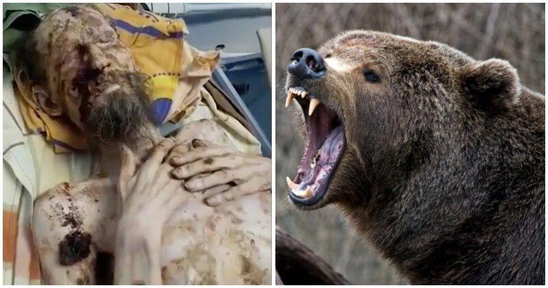 Житель Тывы месяц прожил в берлоге с медведем, сломавшим ему позвоночник-3 фото-
