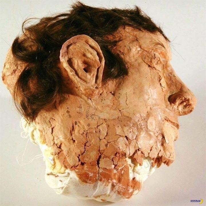 Знаменитая половинка головы из мыла Интересное