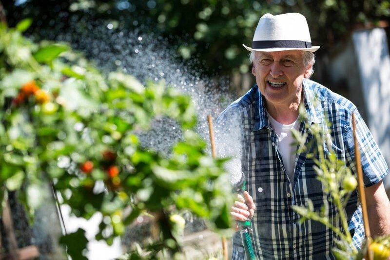 Почему нельзя поливать огород на солнце?                      Интересное